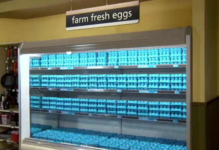 Shaw Free Range TV a její velikonoční vajíčka