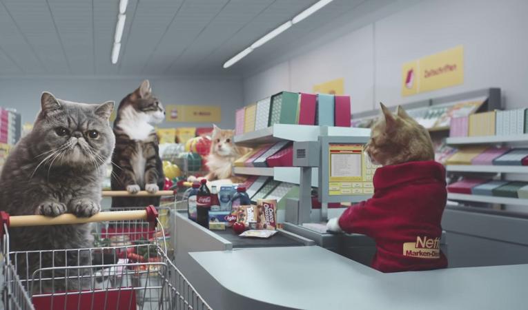 Supermarket vhodný i pro nakupující kočky