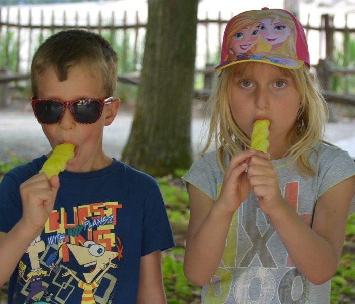 Ze zmrzlin Češi mírně preferují ozkoušené druhy před novými