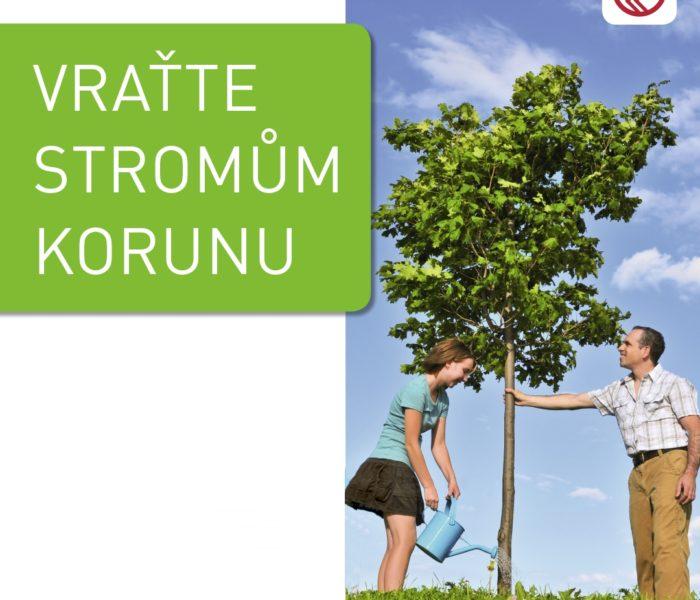 ROSSMANN a Henkel opět vysadí stromy ve městech