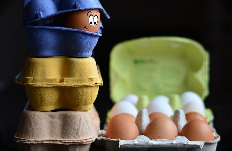 O původ vajec se podle průzkumu Seznam.cz zajímají hlavně mladí lidé