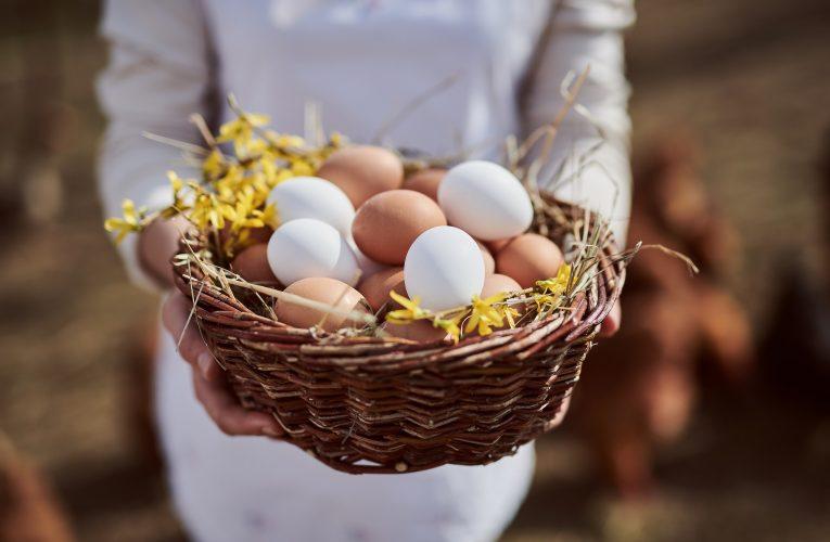 Rohlík.cz natrvalo stahuje z prodeje vejce z klecových chovů