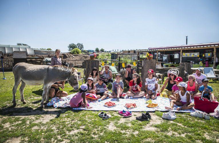 Děti z dětských domovů z Mostu a Staňkova zakončili školní rok na Oslí farmě