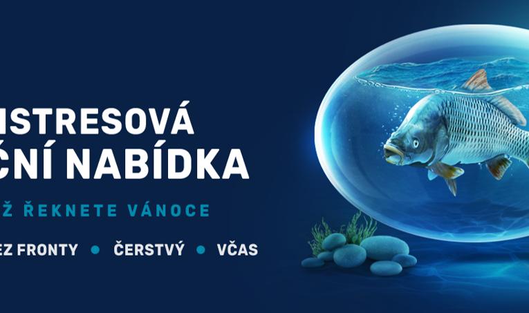 OCEAN48 před Vánocemi expanduje do Prahy i dalších velkých měst