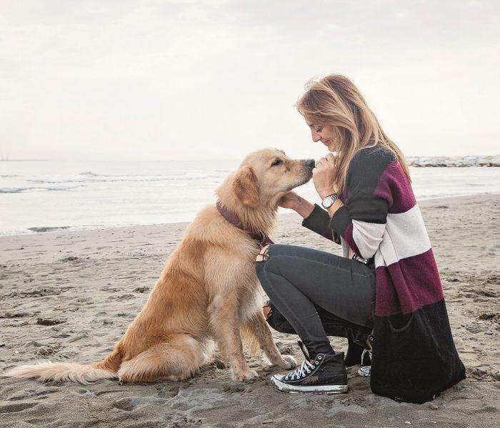 Hornbach představuje krmivo pro psy a kočky FINEVO